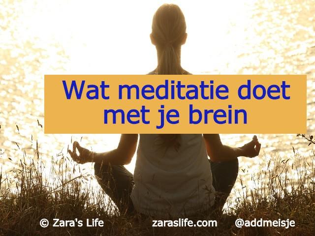 Wat meditatie doet met je brein